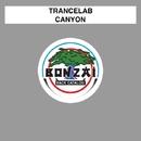 Canyon/Trancelab