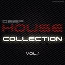 Deep House Collection - Vol.1/Max Riddle & S.Poliugaev & Beatoz & DIMTA & Stereo Saw & Miroslav Wilde & Roway