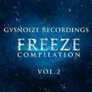 Freeze Compilation Vol.2/TIME FOR ATTACK & Max Riddle & S.Poliugaev & SeaNator & DIMTA & Stereo Saw & Dj Stile & Marat Van Gent & Vitaly Koshman