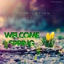 Welcome Spring - Compilation Vol.1/Dj Mix Night & Alex Skywalker & Nicky Smiles & Paul Smith & Dj IGorFrost & DJ Serge Wood & Harmonique & Dzound & Dmitry Bereza & Max Riddle & Dj Amas & Loucura & Veltero & Dies & Nikita-Kozak & Dima Teplov & Doctor B