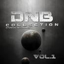 DNB Collection - Vol.1/Centaurus B & GYSNOIZE & Bad Fun & SJ Ocean & Inferno Drums & THE SPEEDWAY & Flanger Drummer & Dmitry Redko & Splazh & E5kipta & DUVRTE