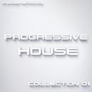 Progressive House Collection 01/Bermuda & Bad Surfer & Harmonique & Dmitry Bereza & Beatoz & Basspowers & Great Brothers & TH & Bugs Bunny & DJ Seat & Me Krob & RONkODONIk