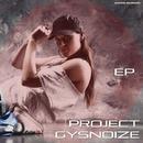 Project/GYSNOIZE
