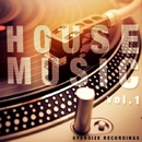 House Music - Vol.1/Thesunbeam & Funky SCORPION & Nicky Smiles & Paul Smith & Dj IGorFrost & SERHIO & TIME FOR ATTACK & Amade Landan & Harmonique & Victoria Ray & Danis Rise & Basspowers & Double Nine