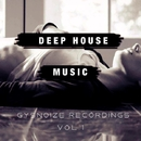 Deep House Music - Vol.1/Dj IGorFrost & Max Riddle & Alex Nikitin & S.Poliugaev & Beat Ballistick & Beatoz & DIMTA & Stereo Saw & Miroslav Wilde & Dj Stile & ELSAW & VEKTOR
