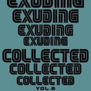 Exuding Collected, Vol. 6/Ahmet Kermeli & DJ Di Mikelis & J. Night & Paro Dion & Anna Tarraste & Veegos & East Sunrise & Arsevty & Deepend & Cosmic Edge & Pacific Mob & Cluster Bitz