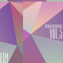 Musical Abstraction, Vol. 5/AnLight & Samulevich Projekt & Sergey Franc & Sebastian Hunter & Jantika & Katarina July & Phillipo Blanke & DJ Flanger & George West & An Light