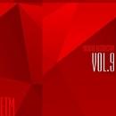 Musical Abstraction, Vol. 9/Marwan Jaafreh & Jequa & Andrey Subbotin & Leonid Gnip & Fcode & Lena Grig & iBang & Kheger & Merantas & StingeR-63 & S.U.M.R.A.K & Jantika & Katarina July & Ivan Lopukhov & Pasta & Petr Right & Max Learon & DjPhatBeatz & Rinat & Damex