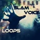 Loops/Slam Voice