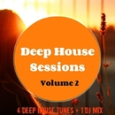 Deep House Sessions 2/Various artists & Philippe Vesic & The Rubber Boys & MCJCK