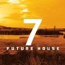 S7VEN FUTURE HOUSE/Various artists & Royal Music Paris & Philippe Vesic & Big & Fat & Dino Sor & Nightloverz & The Rubber Boys & MCJCK