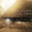 Camel Dreams/Art!ficial Fake