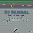 Turn On The Light - Single/DJ Sengal