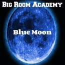 Blue Moon/Big Room Academy