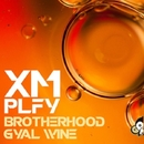 Brotherhood/Xmplfy