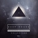 Deep House Collection, Vol.1/Ruslan Stiff & Sweet Peppers & TIME FOR ATTACK & Max Riddle & ARMID & S.Poliugaev & Miroslav Wilde & Ruby Ray