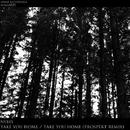Take You Home / Take You Home (Prospekt Remix)/Prospekt & Nybes