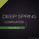 Deep Spring - Compilation Vol.1/Dj IGorFrost & TIME FOR ATTACK & Max Riddle & S.Poliugaev & Beat Ballistick & Beatoz & Stereo Saw & Miroslav Wilde & LastEDEN & Roway & liquid minimal