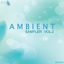 Ambient Sampler Vol. 2/DJ LIFE NIK & Amok404 & Ozzix & Sega Shmatt