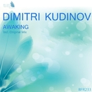 Awaking - Single/Dimitri Kudinov