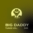 Big Daddy Tunes, Vol.043/Alex Leader & DJ Di Mikelis & DJ Ja-lambo & Chris Fashion & DJ Sergey Skill & NIR 300 & DeDrecordz & Nezo & Acro & DJ Oparin