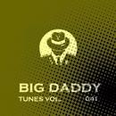 Big Daddy Tunes, Vol.041/Dave Silence & Nemphirex & Mike Sweet & Nashorn & Max Learon & Alexandr Evdokimov & Perspective DJ's & Alex Strk & Arjuno Music & Astiom