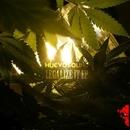 Legalize It EP/Huevosound & History Man