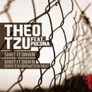 Shut It Down/Theo Tzu Feat. Pucona & Davey Berkowitz