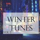 Winter Tunes, Vol. 2/D.Malinin & Alex Van & Ivan P & Dj nighter & Mr. Poo & Sander Frame & Andrey Tukaev & DJ Zoombi & Ron Guesta & Polushkin & Homsan