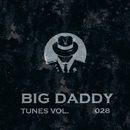 Big Daddy Tunes, Vol.028/Ahmet Kermeli & DJ Di Mikelis & Filek & Korben Dement & Satori Panic & N. Wade & Rain Freeze & Totsky & Koptyakoff & Alimov
