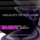 Hold On To My Love/Ernesto Deep & Dj Pruess