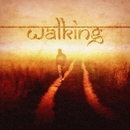 Walking/Double Fuse