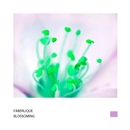 Blossoming - Single/Faberlique