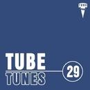 Tube Tunes, Vol.29/Mogler & Matt Ether & Zhekim & Sky Mode & Manchus & Quantum Duxe & Phil Fairhead & NuClear & Satori Panic & X Hydra Project & Stop Narcotic & S.M & Strobelepsia & Timaki & Piece Of Peace & X-Vision & NO ONE