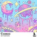 Cosmos/Boy Funktastic