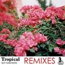 Tropical Remixes/Boy Funktastic & Dr. Zapata