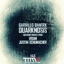 Quarknosis/Vegim & Garillo Dansek & Garillo Densek & Justin Schumacher