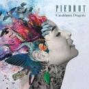 Casablanca Dragons/Pierrot