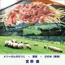 メリーさんのひつじ(ロック) - 緊張 - 幻の光(新録2017)/宮野徹