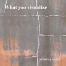 What You Visualize/sensing sense