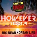 DREAM LIFE/BIG BEAR