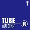 Tube Tunes, Vol.10/Creatique & Bob Decyno & DJ Grewcew & Sky Mode & Cristian Agrillo & Bad Surfer & DJ AleX_Xandr & DJ 5l45h & Club Vission & Dj Solar Riskov & Jagin & Dan Rise & BeatFort & DJ KvanT & DJ Volya & EasyWay & Enery Kimo & Invisible Dust & Sein