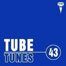 Tube Tunes, Vol.43/Creatique & Ed Krutikov & A.Su & Kraynidolski & Alex Sender & Deep Drop Falls & Grey Wave & Andre Hecht & LifeStream & Retrig & Processing Vessel & L-Kid & Stop Narcotic & The Meals & Denis Kotoff & Magnum Beatman & DJ Ivan Tkach