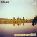 Thin Line Of Horizon/Ginbass