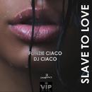 Slave To Love/Fonzie Ciaco & DJ Ciaco & DJ Alf