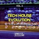 Tech House Evolution, Vol. 3 (Club Music Collection)/Alex Addea & Lake Koast & Black Nation & Voodoo King & Pole Pole & Saxomatto & Alex Neuret & Drum Nation & Zulu Crew & Babashao & Chris Chain & Black Guruh & Dirty Relight