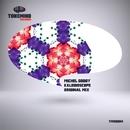 Kaleidoscope - Single/Michel Godoy