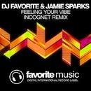 Feeling Your Vibe - Single/DJ Favorite & Incognet & Jamie Sparks