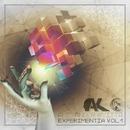 Experimentia Vol.1 (Array)/Alexander Kvitta