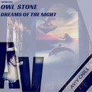Dreams Of The Night - Single/Owl Stone